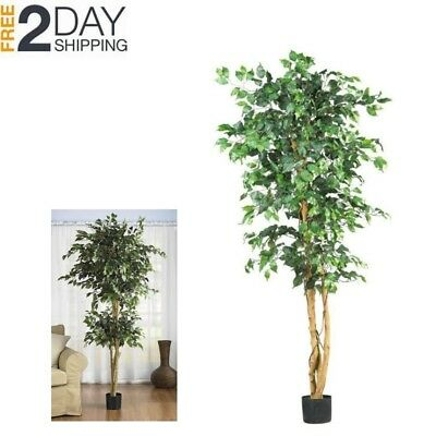 (Ficus Tree Indoors Large Outdoors Artificial Silk Nearly Natural Leaves Green )