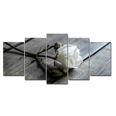 Painting Pictures Canvas Print Home Decor Wall Art Landscape White Rose Framed