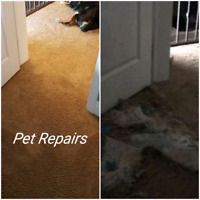 Carpet Repairs carpet restretching call or text 3067178059