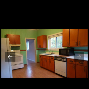Solid wood kitchen cabibets, countertop, sink/faucet
