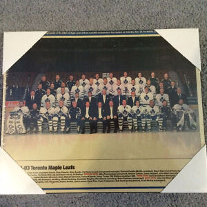 Toronto Maple Leafs Team Photo 2002-2003 Sealed