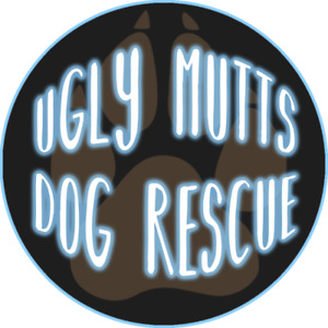 **FOSTERS NEEDED!**