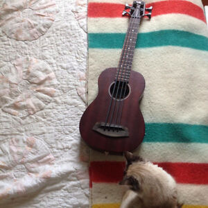 KALA U BASS Acoustic Elecrtric Bass for Sale