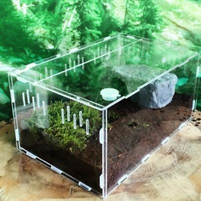 Transparent Acrylic Pet Reptile Box Reptile Terrarium Small Pet Breeding