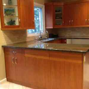 Countertop Get A Great Deal On A Cabinet Or Counter In Kitchener Waterloo Kijiji Classifieds