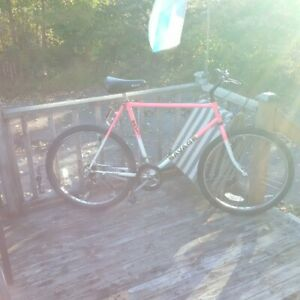 22inch frame savage Torrent Bycycle
