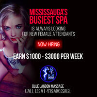 Busy & Established Massage Parlor - Perfect For Students