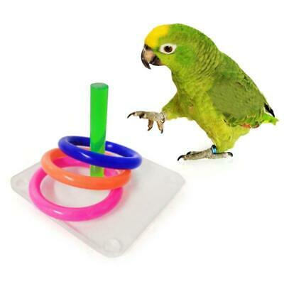 Bird Educational Puzzle Toys Acrylic Interactive Ring Toss Game Parrot Training