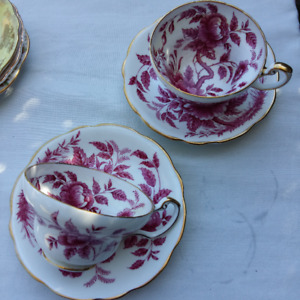 RARE GORGEOUS PAIR OF FOLEY PEONY CUPS AND SAUCERS