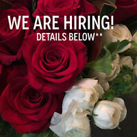Looking for part time help to start ASAP