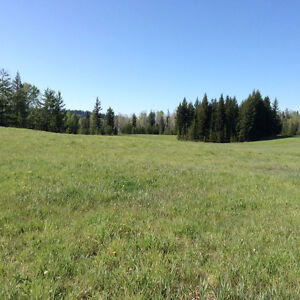 Property for sale Prince George British Columbia image 8