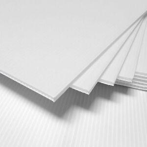 Corrugated Plastic 18