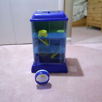 Hamster House and Wheel
