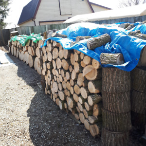 Fire Wood For Sale- two ASH hardwood trees cut down