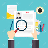 Professional Resume and Cover Letter Writer