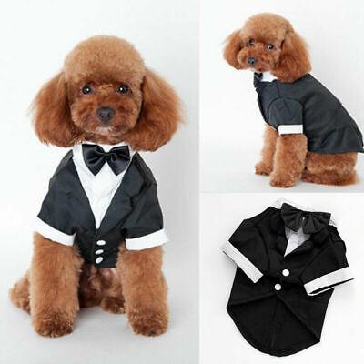 Dog Wedding Outfits (Dog Pet Puppy Clothes Tuxedo Bow Tie Shirt Suit Stylish Wedding Apparel)