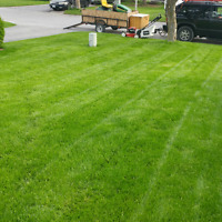 Grass Cutting - Affordable Reliable Professional Service
