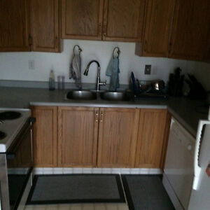 Looking For Roommates / Renters Strathcona County Edmonton Area image 10