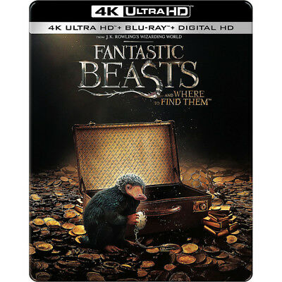 Fantastic Beasts And Where To Find Them Steelbook  2017  4K  Blu Ray  Digital