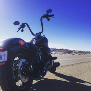 2018 Harley Davidson Softail Slim S