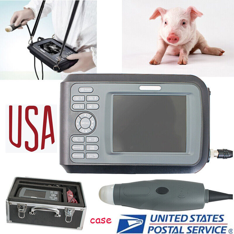 Portable Ultrasound Scanner for Veterinary 3.5M mechanical sector scanning Probe