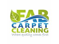 Professional Cleaning, Carpets, Upholstery, Carpet protection and stain treatment