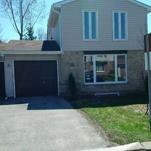 3 Bedroom Townhouse for Rent- Newly Renovated in Forest Heights