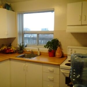 Beautiful fully furnished 1 bdrm apt available feb15-may15