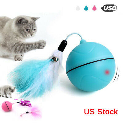 Interactive Globe Toy (Smart Interactive Dog Toy Automatic 360 Degree Self Rotating Ball)