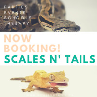 Reptile Birthday Parties and Events!