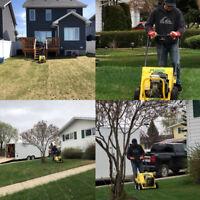 Lawn Maintenance, Lawn Aerate, Power Rake, Patio, Garden, Prune