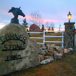 Horse Boarding available at Corner Stone Farm