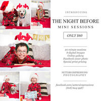 The night before (christmas mini sessions )