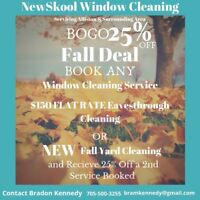 WIndow Cleaning, Eavesthrough Cleaning, and Fall Yard Clean Up