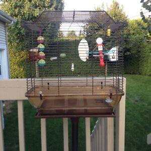 Cage pour oiseaux avec accessoires.