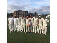 Cricket Club in Harrow