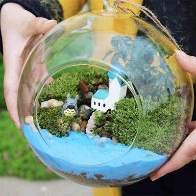 Creative Glass Ball Vase Flower Plant Pot Terrarium Container Home Office Decor (Glass Terrariums)