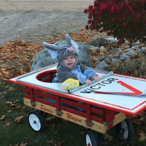 Mouse Trap Halloween Costume with Wagon