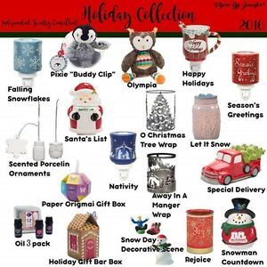 Join my Scentsy Team!!! Tina - Independent Director Kingston Kingston Area image 3