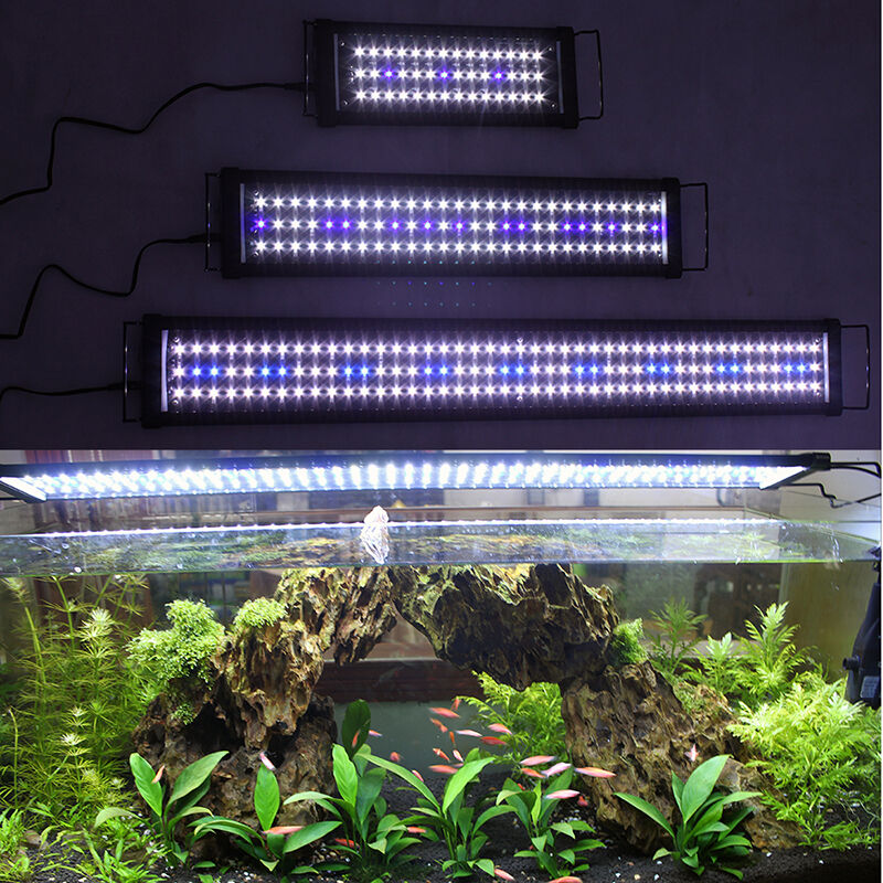 4ft 3ft 2ft 1ft blue white aquarium led lamp lights coral for Blue light for fish tank