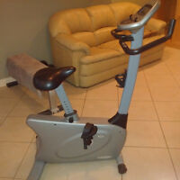 Upright Exercise Fitness Bike E1500