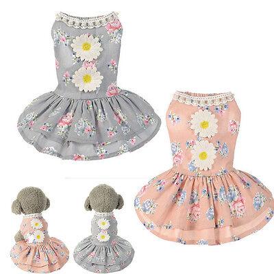 Dog Bow Tutu Dress Lace Pet Skirt Puppy Dog Dress Costume Apparel Clothes - Bow Costume