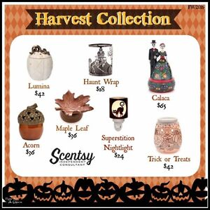Looking for Scentsy? Look no further! Cornwall Ontario image 2