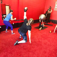 Elite personal training & IRONFIT group training to get you FIT!