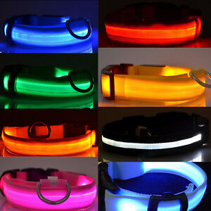 LED dog collars ** Safety and Fun **