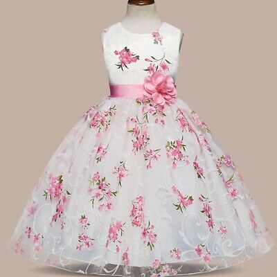 Party Girl Clothing (Kids Girls Floral Princess Wedding Party Dresses Girl Clothes Tutu Party)