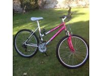 Pink and Silver Mountain Bike