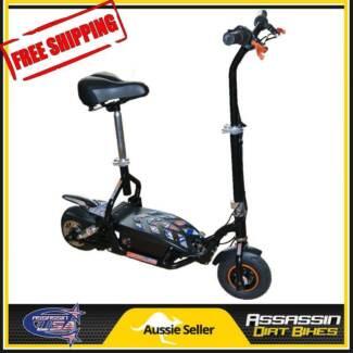NEW Assassin USA SCOOTERS 300W 24V Electric Scooter DE300WK Xmas