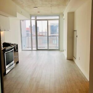 Beautiful brand new 2 Bedroom + 1 Parking Condo - Dt Toronto