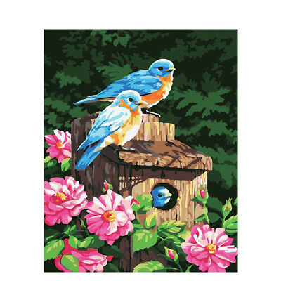 Paint By Numbers - DIY acrylic Painting Picture Art - Birds on the feeder